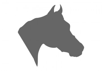 Horse Stencil Shapes - Custom Horse Stencils | Craftcuts.com