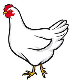 Images Of Chicken - ClipArt Best