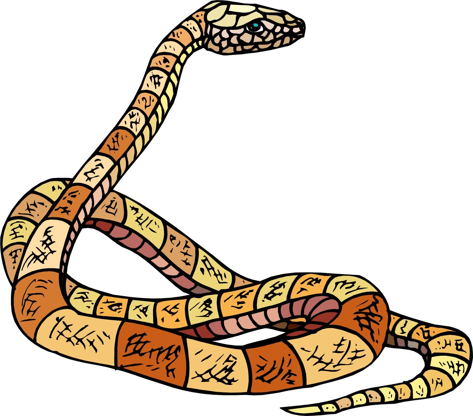 Cartoon Snake Clipart Best Clipart Best