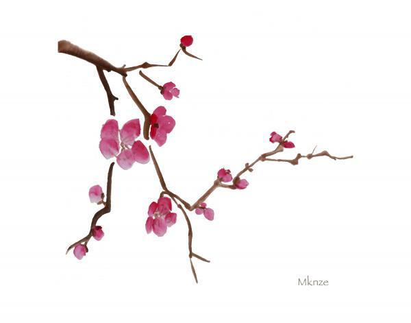 Japanese Cherry Blossom Clip Art  Car Interior Design
