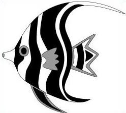 Angelfish black and white drawing - photo#7