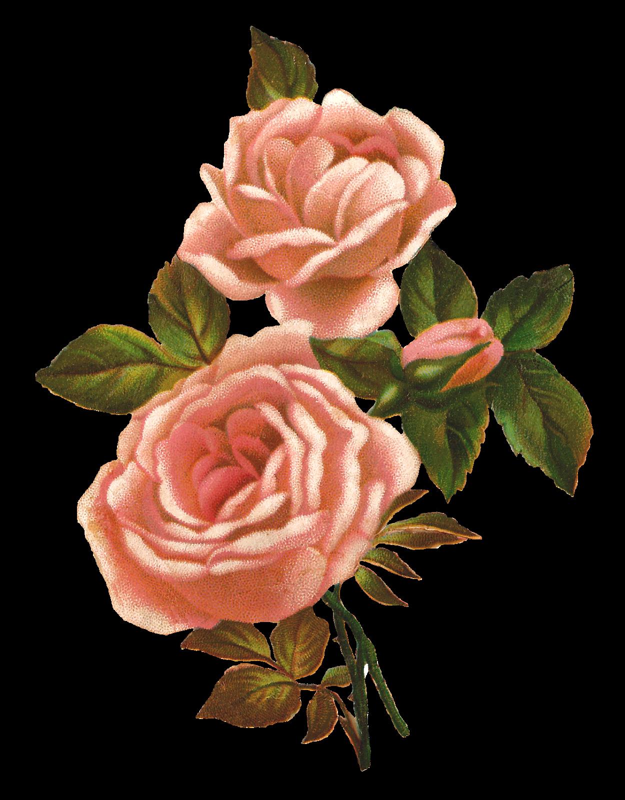 Vintage Flower Png Clipart Best
