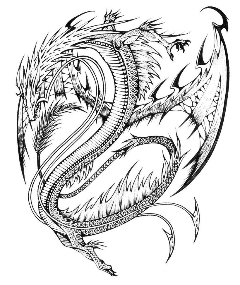 Printable coloring pages of realistic dragons ~ Baby Dragon Coloring Pages - ClipArt Best
