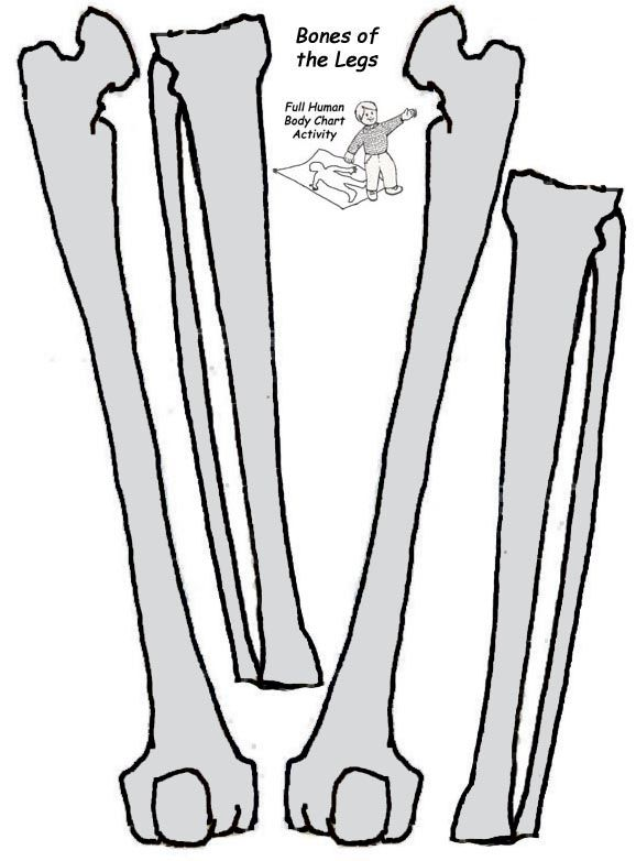 Printable skeleton template clipart best for Skeleton template to cut out