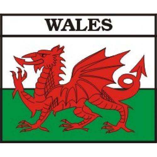Welsh Dragon Flag - ClipArt Best