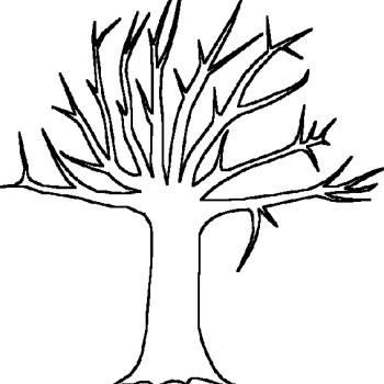 Coloring pages tree branch ~ Tree Branches Coloring Pages - ClipArt Best