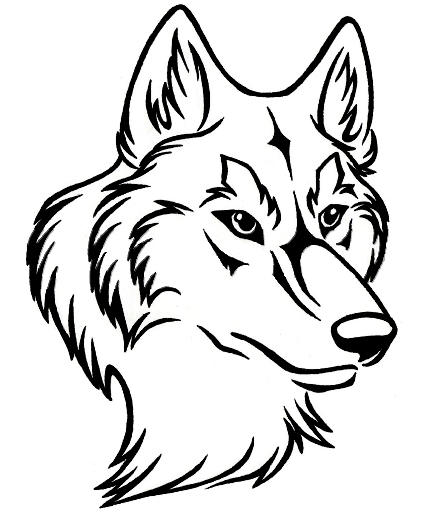 Line Drawing Wolf Head : Wolf head line drawing clipart best