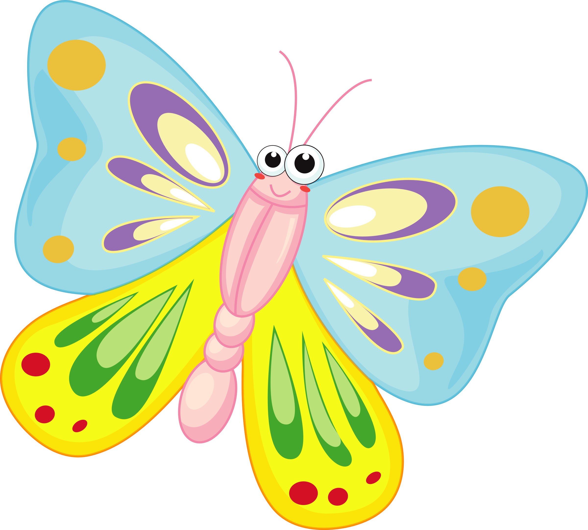 Butterfly Transparent PNG Pictures  Free Icons and PNG