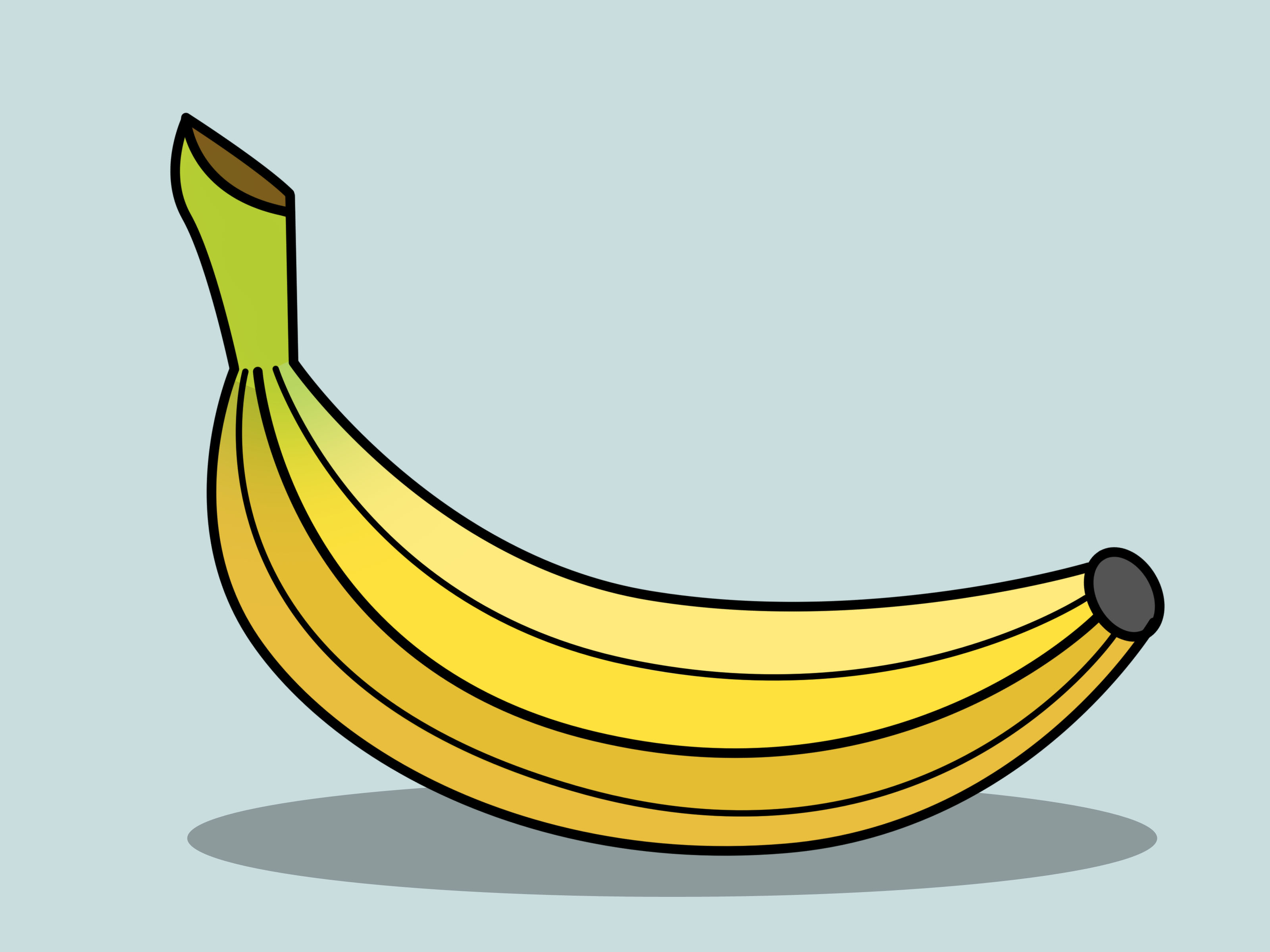 Line Drawing Banana : Banana line drawing clipart best