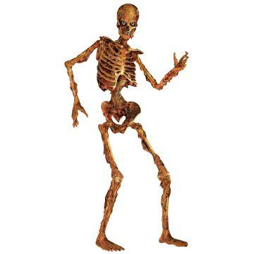 Scary Skeleton - ClipArt Best