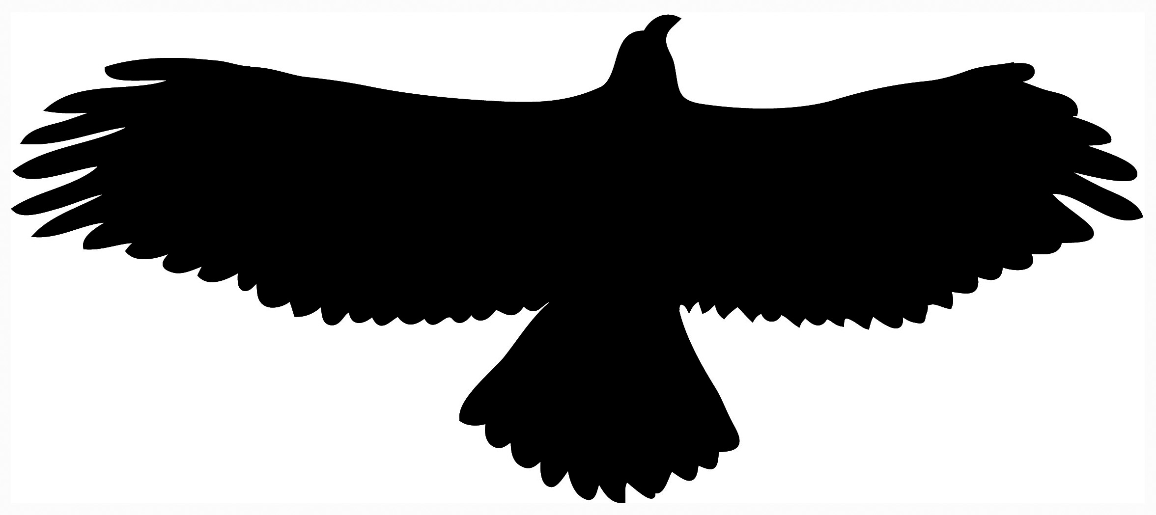 eagle bird clip art - photo #45