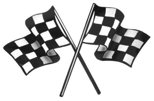 nascar checkered flag 2013