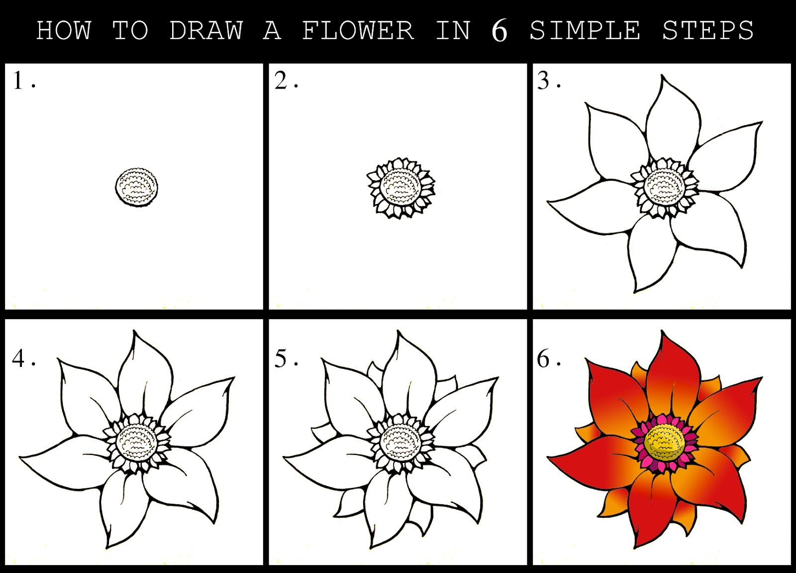 Easy Flowers to Draw For Beginners Step by Step Easy Flowers Drawings Step