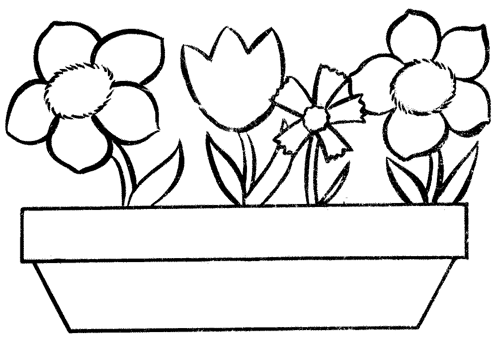 flower pot coloring page clipart best