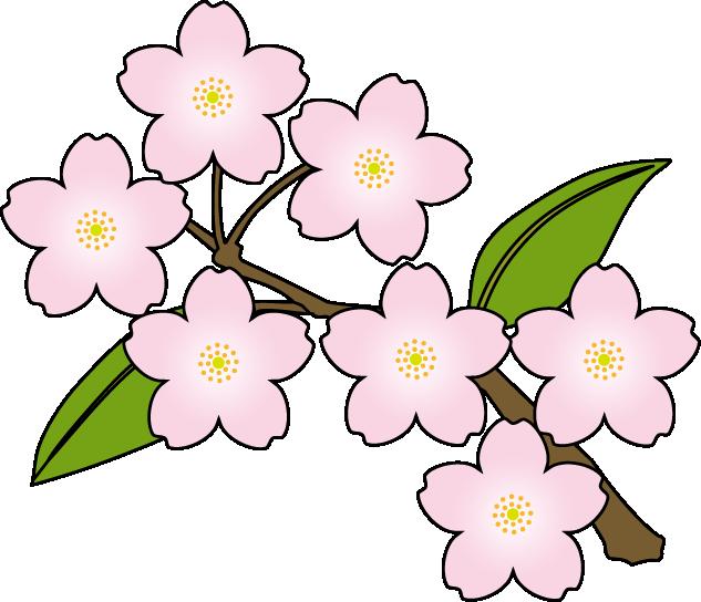 Cherry Blossom Clip Art - ClipArt Best