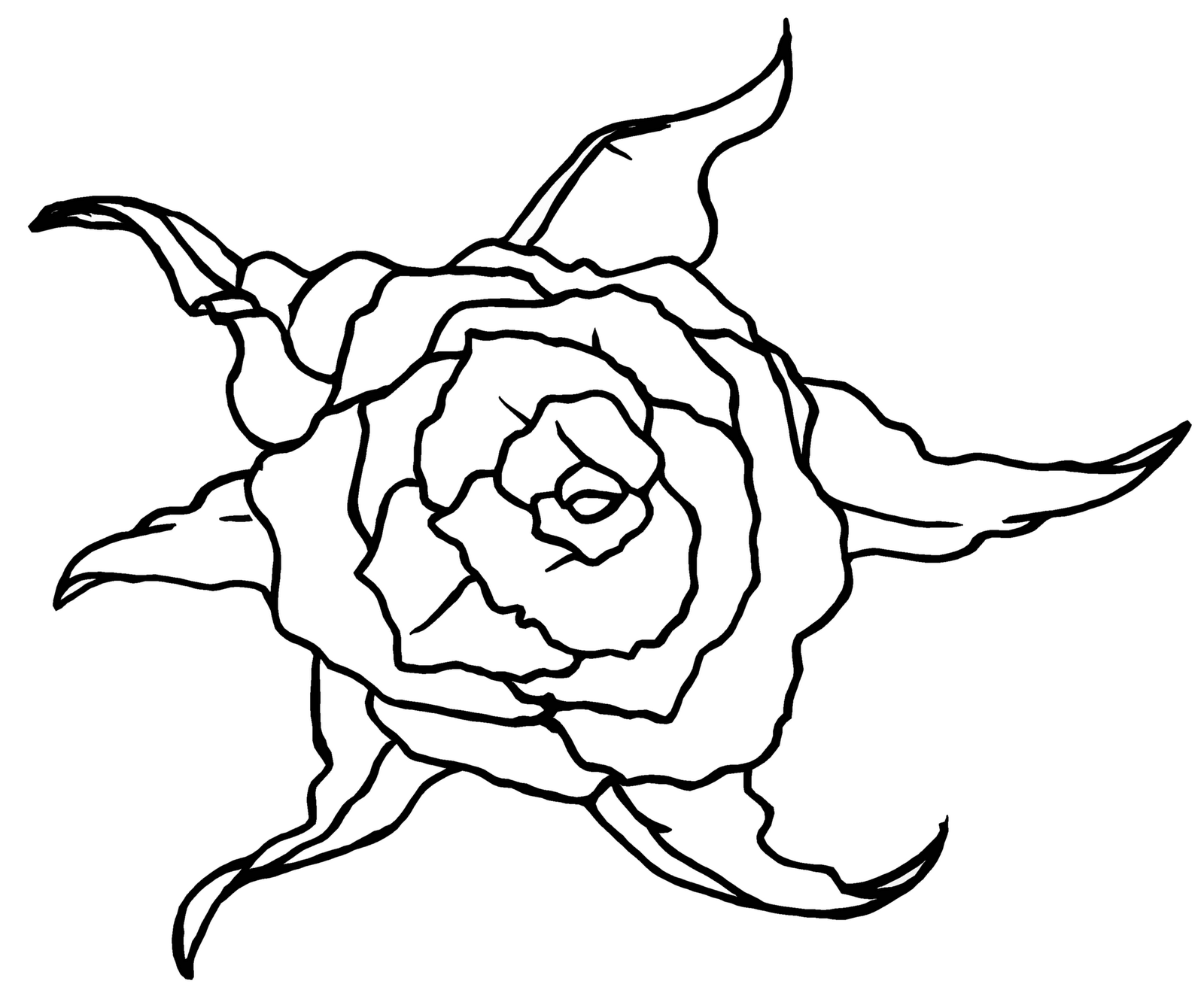 Drawing Line Qt : Rose line drawings clipart best