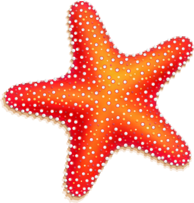 20 starfish free cliparts that you can download to you computer and    Clipart Starfish