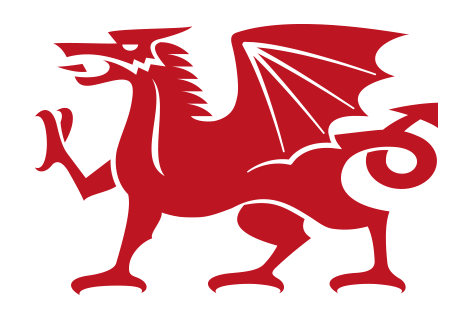 Dragon Graphic Design Hurley Graphic Design