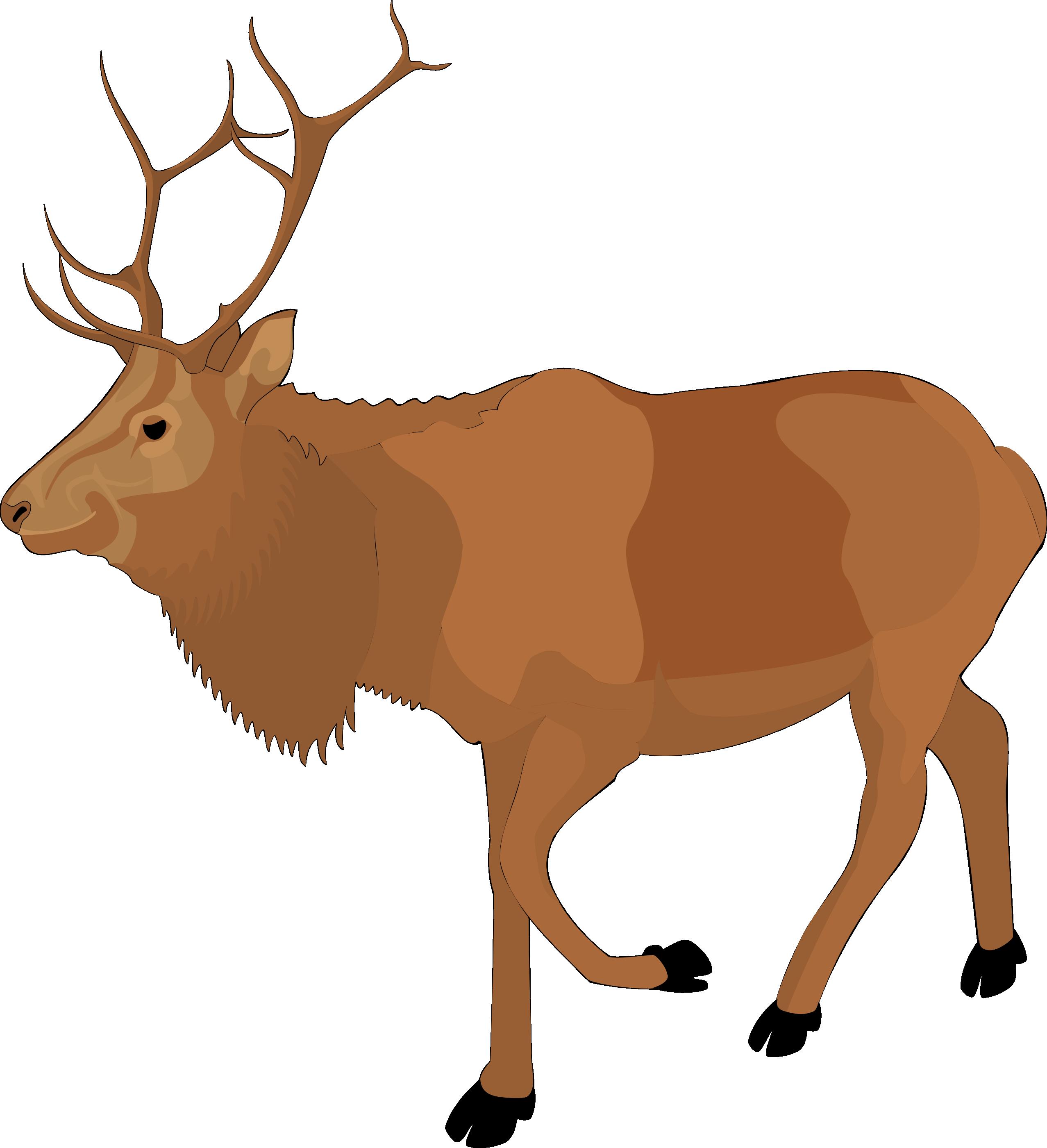 Clip Art Reindeer - ClipArt Best