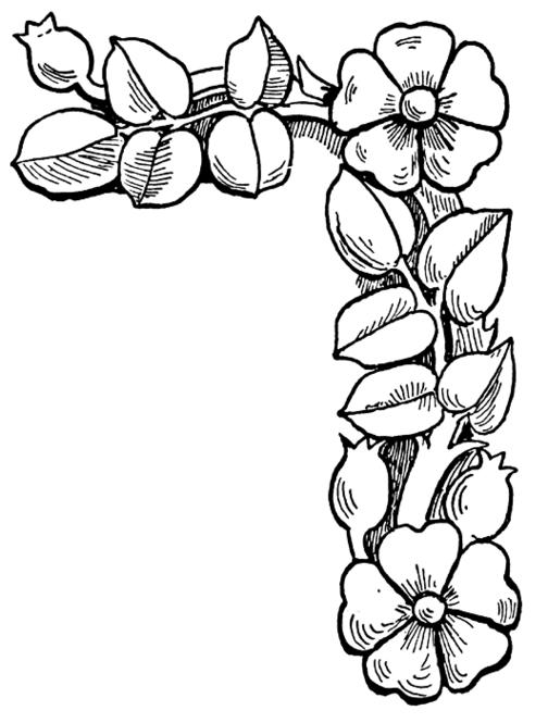 Flower Border Coloring