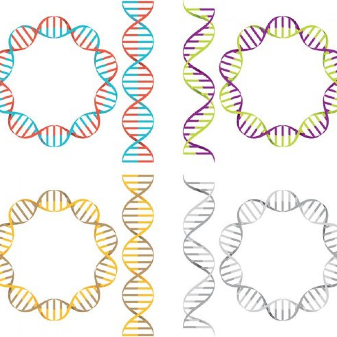 Free vector Double Helix Vectors #22691 | My Graphic Hunt
