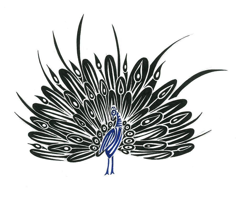 Peacock Drawings for Sale