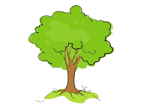 how to draw a good animated tree