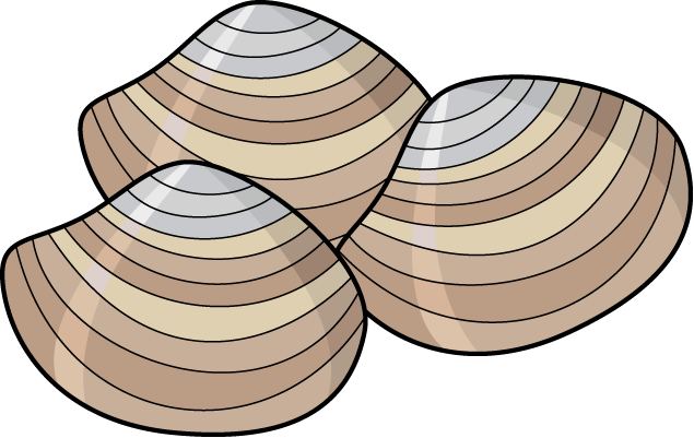 Clam Clip Art - ClipArt Best