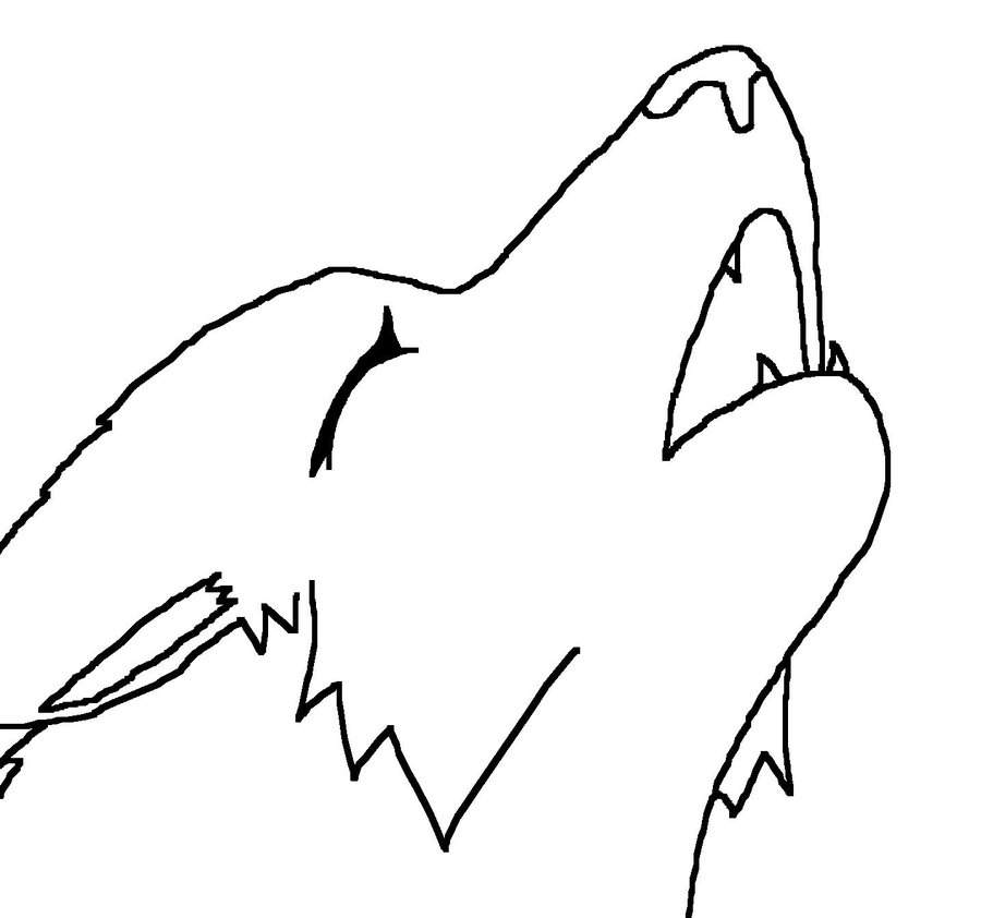 how to draw wolves book