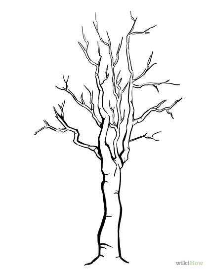 Tree Trunk With No Leaves Coloring Pages Tree Trunk Coloring Page