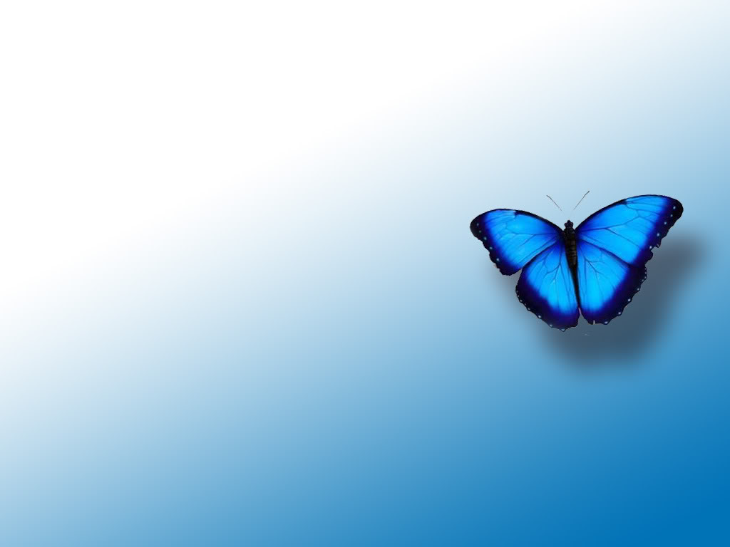 download texture blue butterfly on background  download free clip art butterfly silhouette images free clip art butterflies birds
