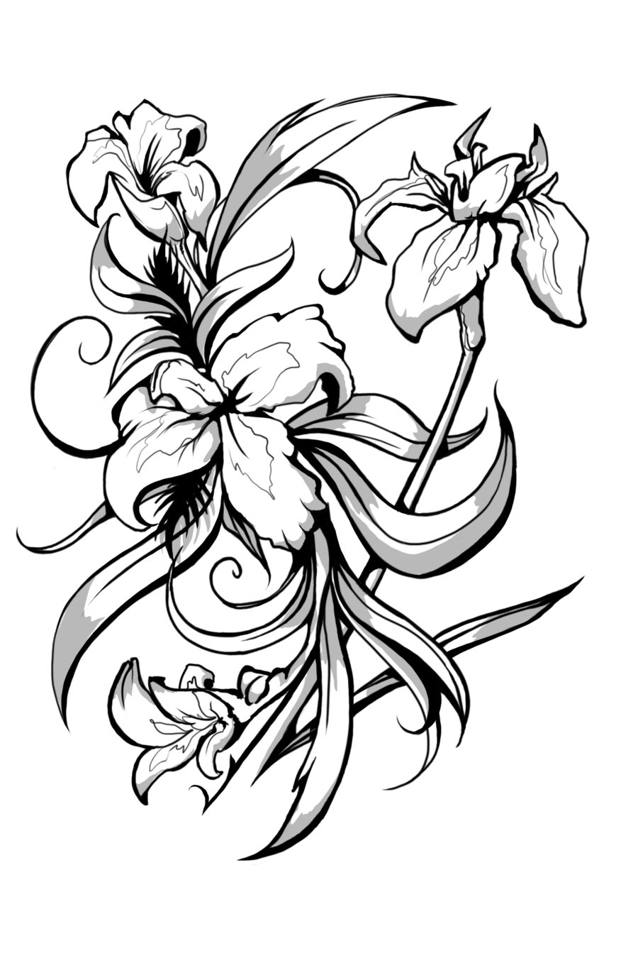 Black Line Drawing Tattoo : Black and white iris flower tattoo designs clipart best