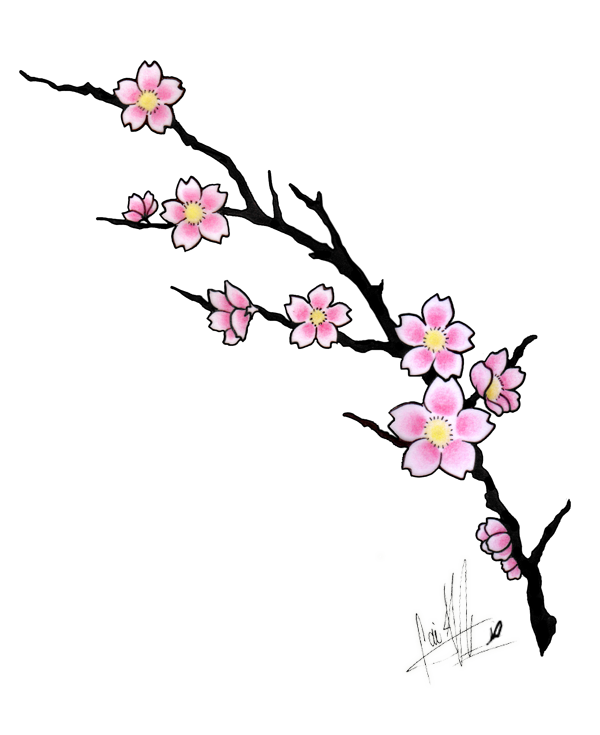 Cartoon Cherry Blossom Tree - ClipArt Best