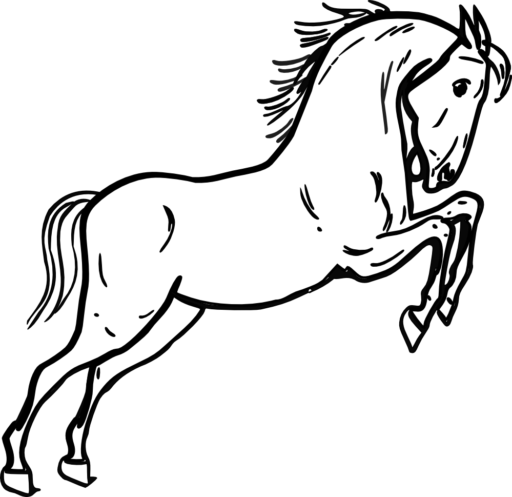 Line Drawing : Horse line drawing clipart best