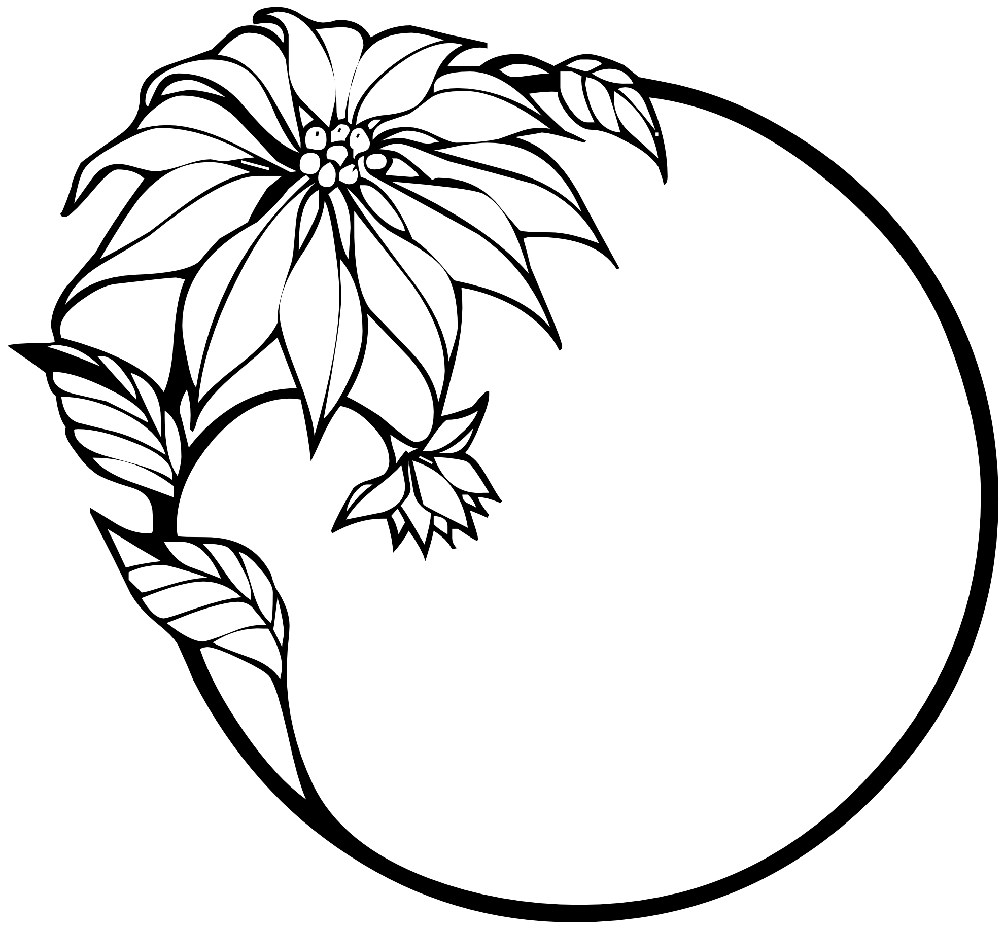 Floral Art Line Design : Flower line art clipart best