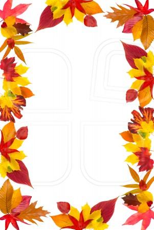 Fall Leaves Border Clip Art - ClipArt Best