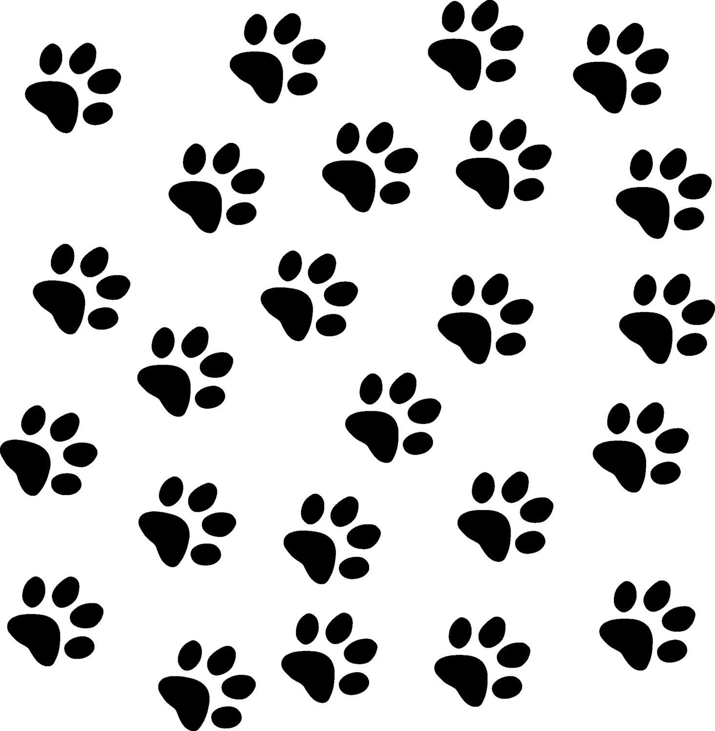 dog paw prints in - photo #44