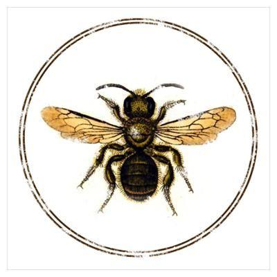 Honey Bee Illustration - ClipArt Best