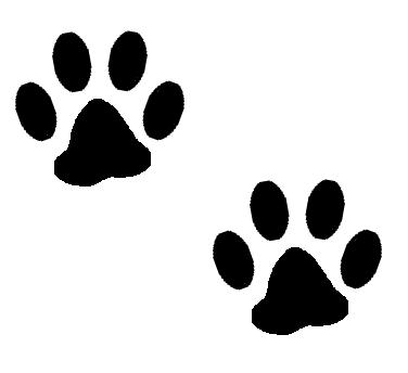 White Transparent Cat Paw Print