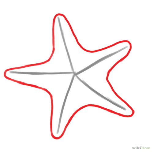 star fish outline clipart best