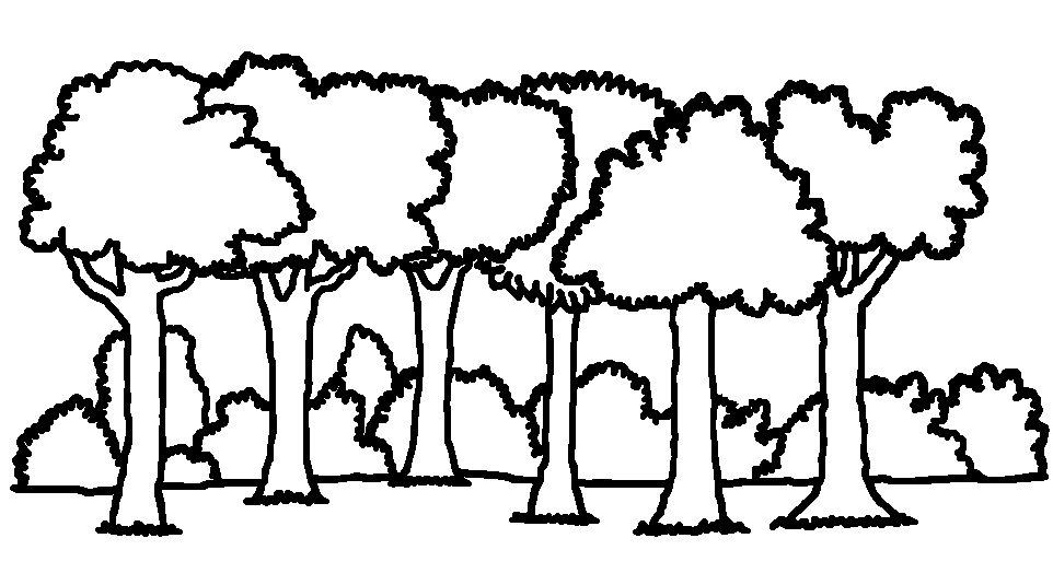 forest background coloring pages - photo#24