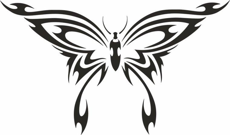blog de dessins tribal animaux sur ce blog vous allez trouver