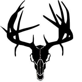 Products as well Large 7 Pt Elk Antlers Decal Bow Arrow Blind Deer Hunt p 61 furthermore Clipart 26416 as well Antlers furthermore Goat S Head Tattoo 45734014. on free clip art deer head with horns