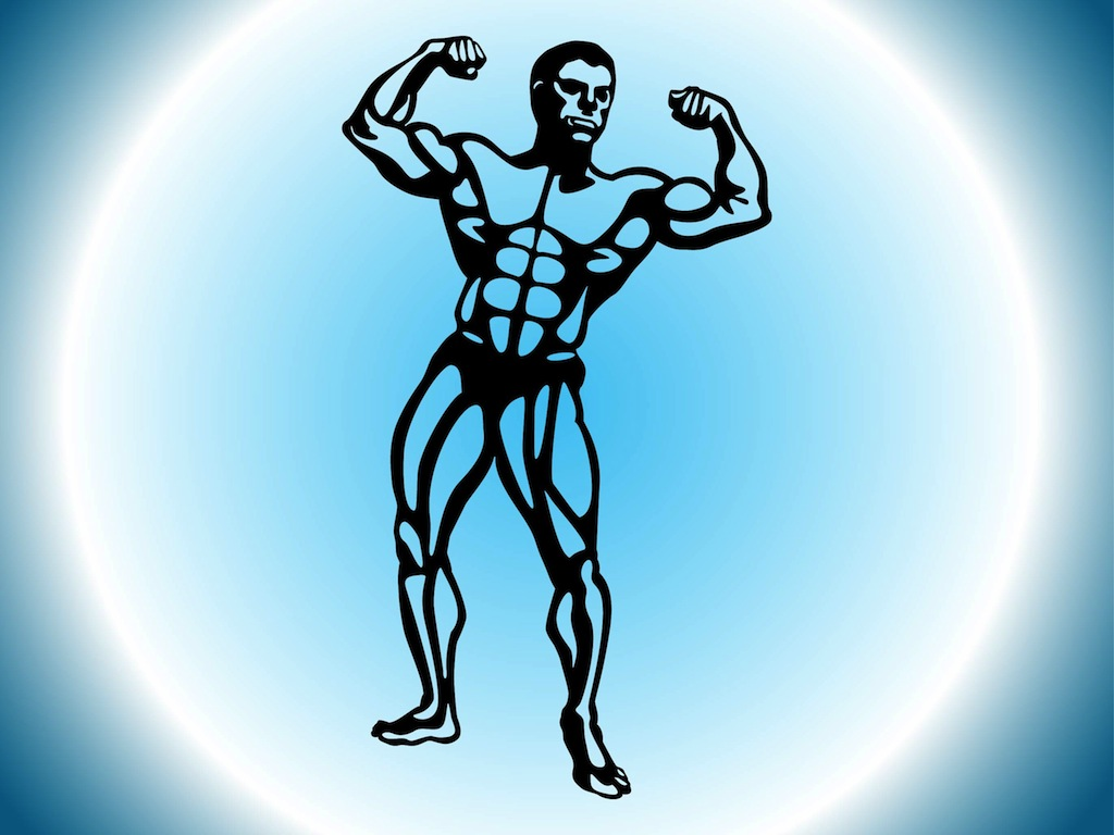body building outline So we have these metaphors: a body, a building, a family, and a bride each of those is a picture of how we are organically related to christ.