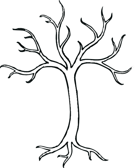 How To Sketch A Tree Without Leaves Clipart Best