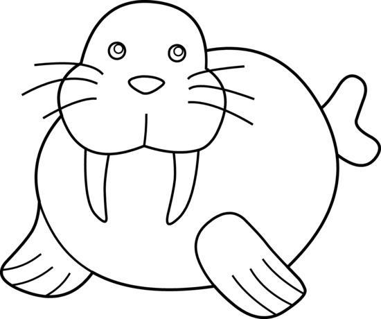 Walrus Sitting Clip Art Download 166 clip arts Page 1