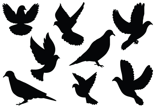 Dove Silhouette Vector - ClipArt Best