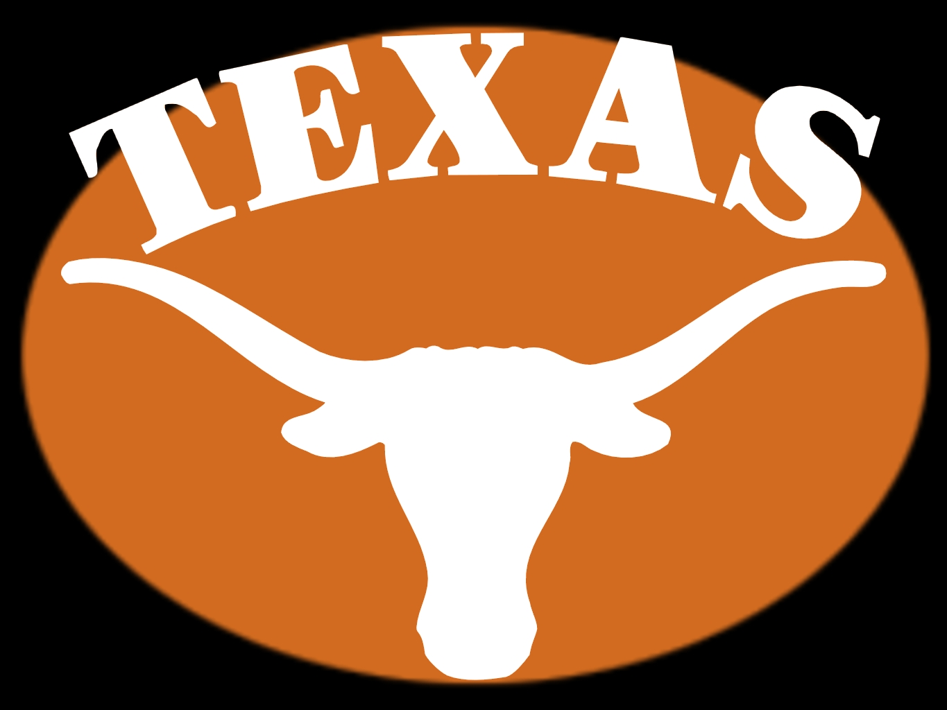 1000+ images about Texas Longhorns Fan!!