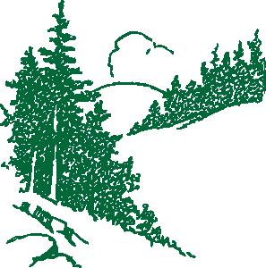Pine Cone - ClipArt Best
