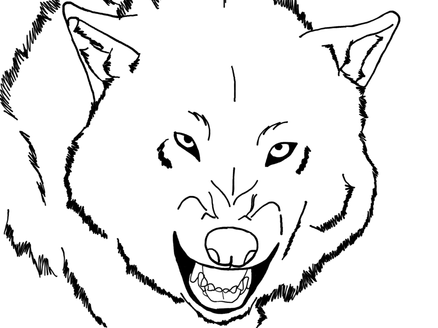 Realistic Snarling Wolf Blank Render - ClipArt Best - ClipArt Best